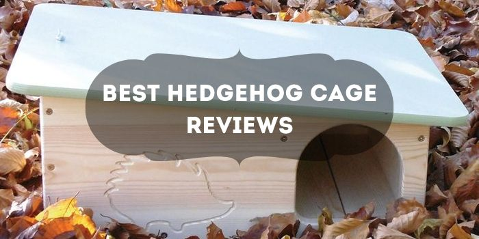 Hedgehog Cage Reviews