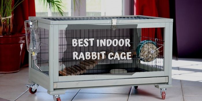 Indoor Rabbit Cage reviews