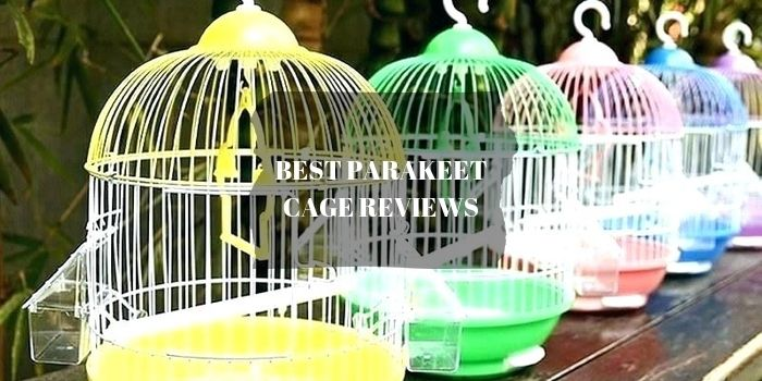 parakeet cage reviews
