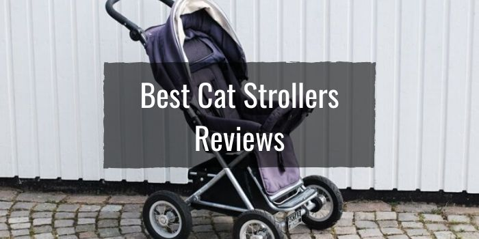 Best Cat Strollers Reviews