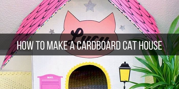 How to make a cardboard cat house