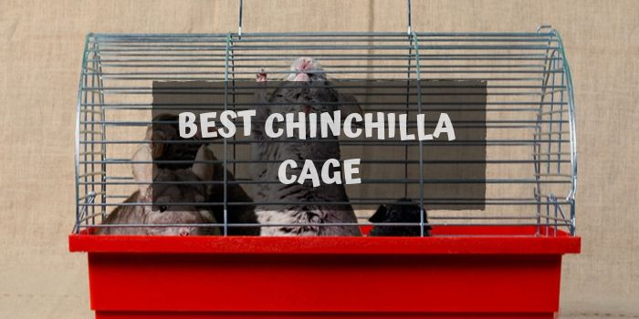 chinchilla cage review